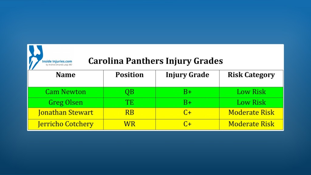 Panthers jnjury grades